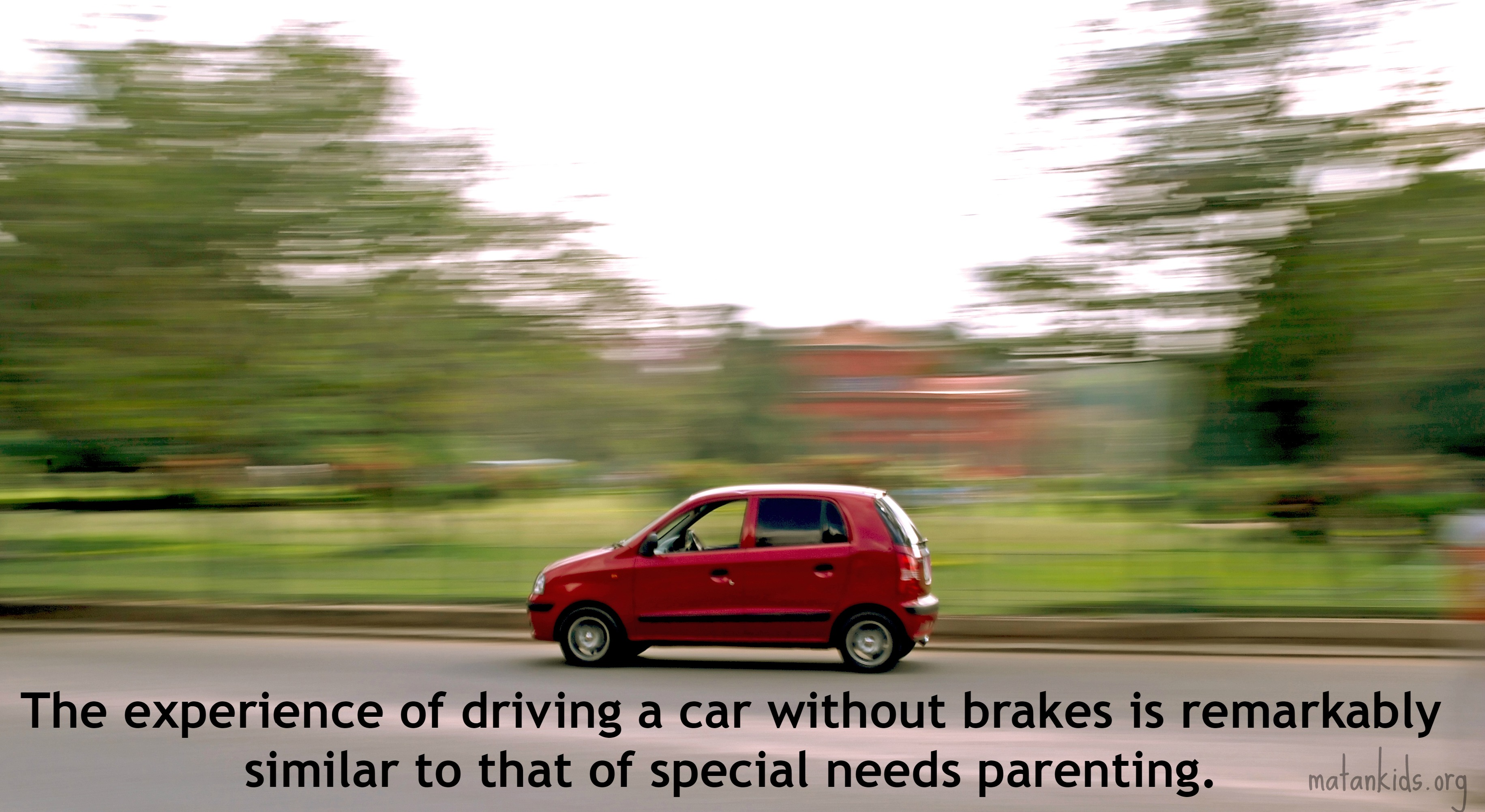 Stop the Car: Special Needs Parenting