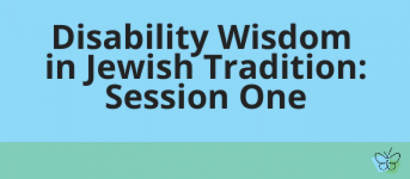disability wisdom session one