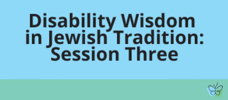 disability wisdom session three